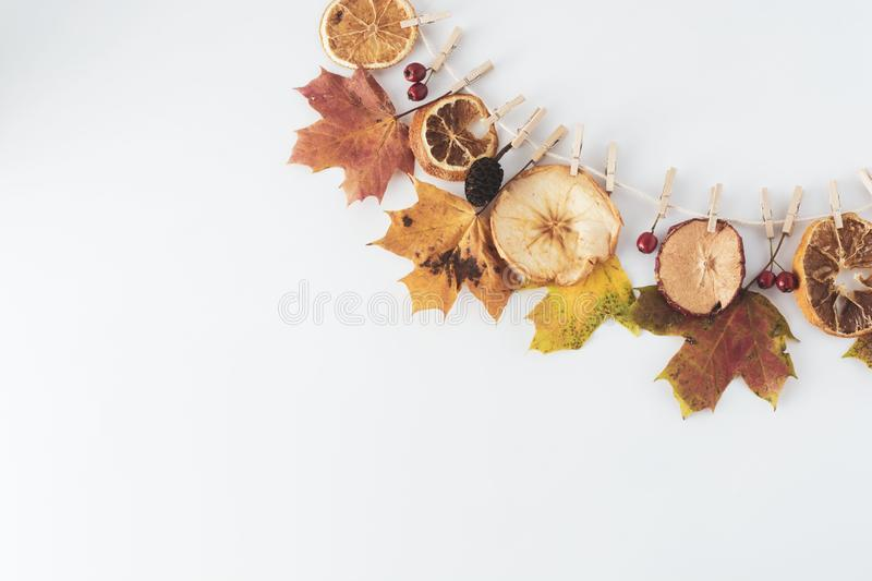 Fall composition of leaves hanging on a clothesline isolated on white, copy space. Flat lay autumn background royalty free stock photo