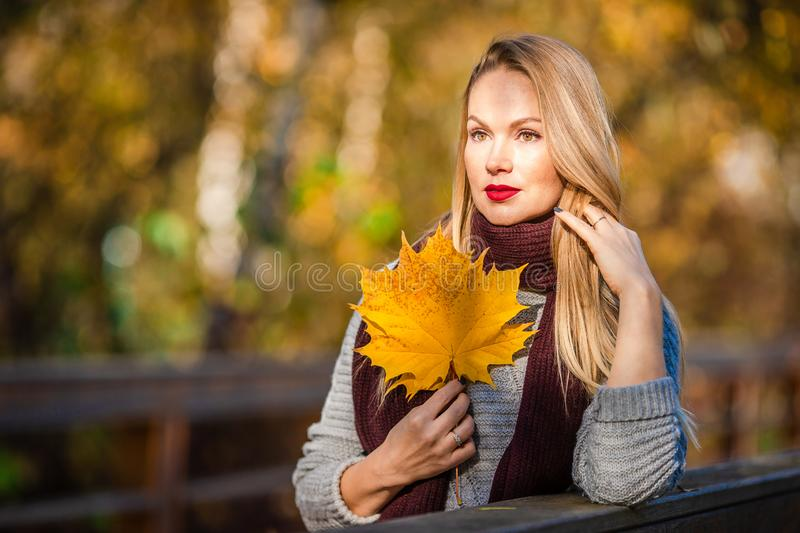 Fall concept - beautiful woman drinking coffee in autumn park under fall foliage. Beautiful woman in autumn park under fall foliage at warm day. Autumn woman in stock image