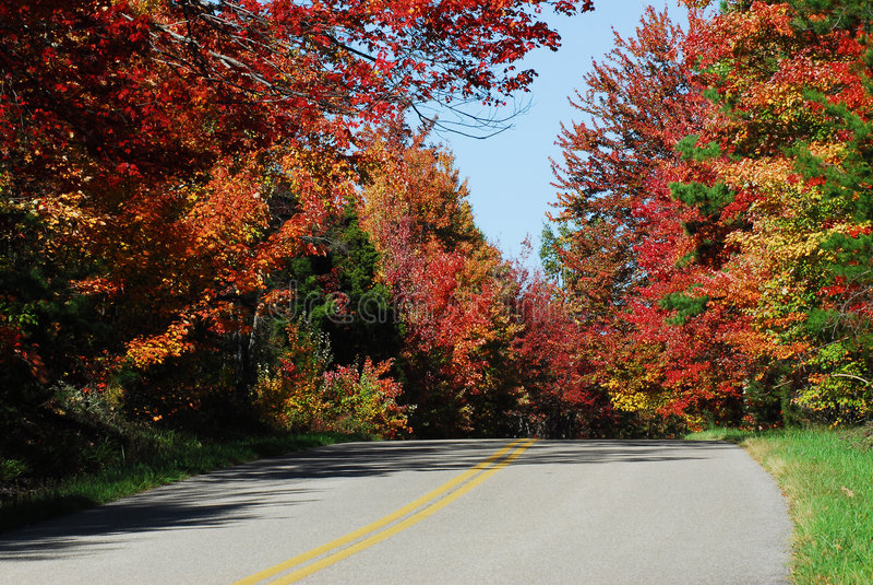 Fall Country Road. North Carolina Country Road in Fall royalty free stock photos