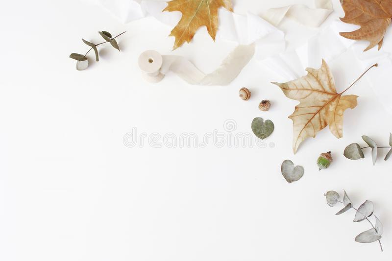 Fall creative styled composition. Autumn floral arrangement with dry eucalyptus, maple leaves and silk ribbon on white stock photography