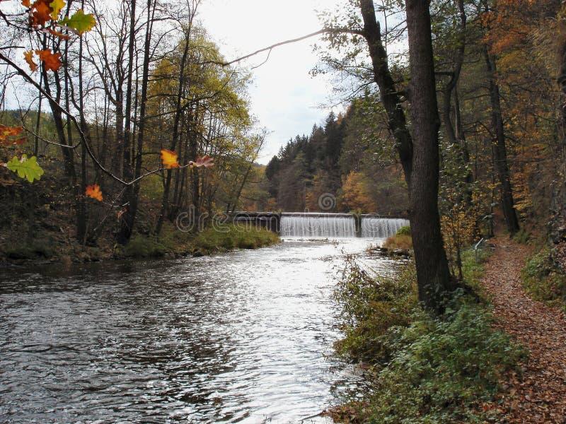 Fall in das Zschopau-Tal in Erzgebirge lizenzfreies stockbild