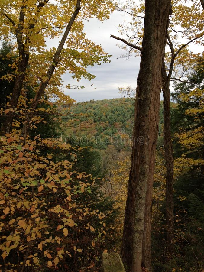 Fall day at the gorge. In Mohican State royalty free stock photography