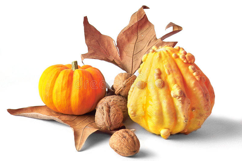 Download Fall decoration stock photo. Image of gold, fall, harvest - 250550