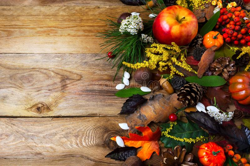 Fall decoration with rowan berries on wooden table royalty free stock photos