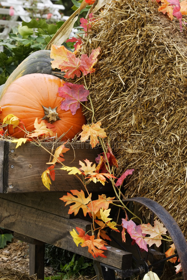 Fall Decorations royalty free stock photo
