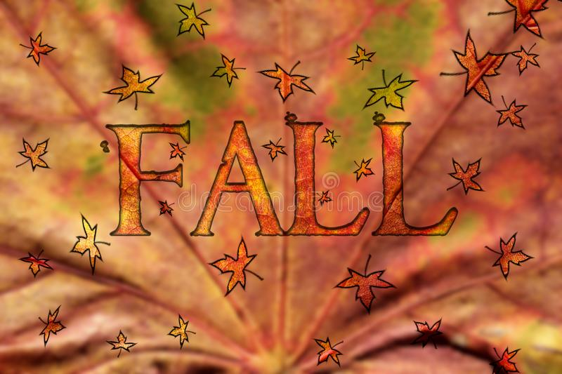 Fall Design with Floating Leaves royalty free stock photo