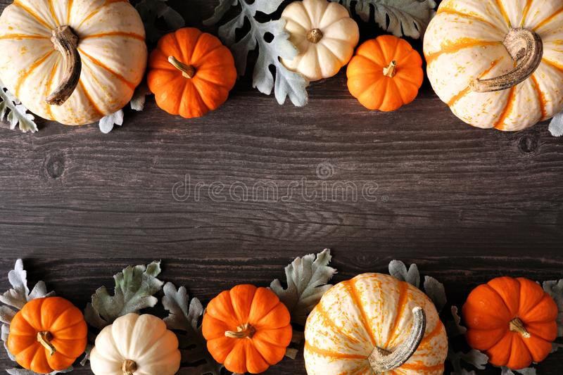 Fall double border of colorful pumpkins and silver leaves against a dark wood background stock image
