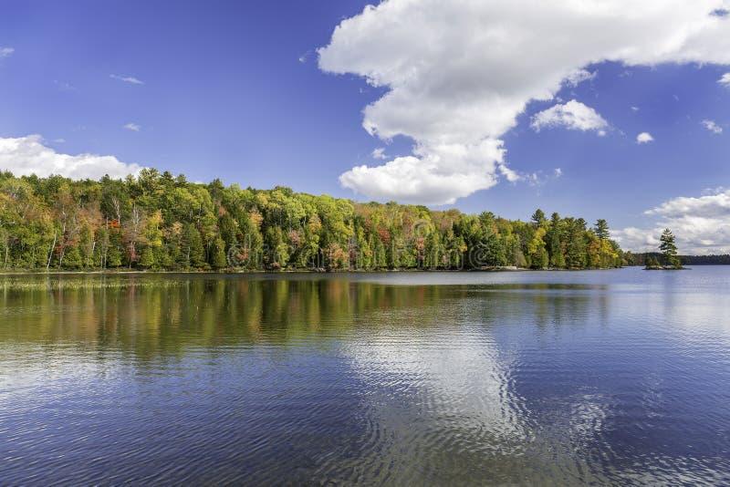Fall färbt das Reflektieren vor einem See im Herbst - Ontario, Kanada lizenzfreies stockbild