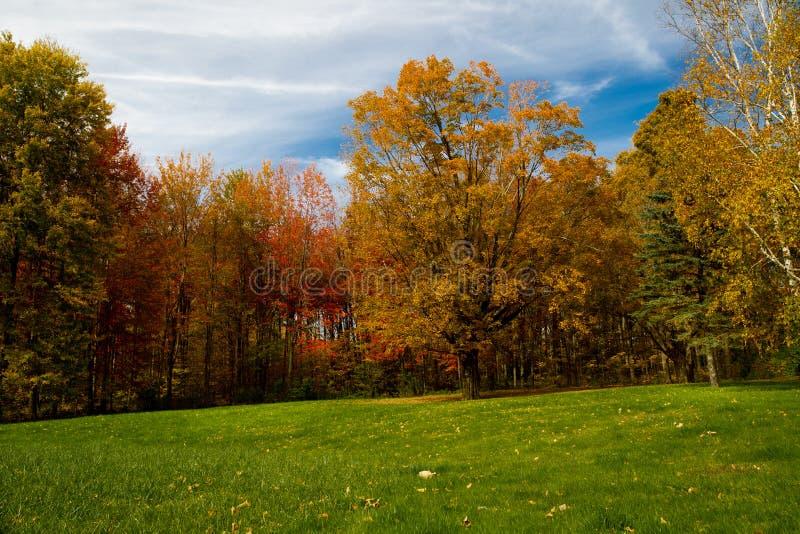 Fall färbt Vermont lizenzfreies stockbild