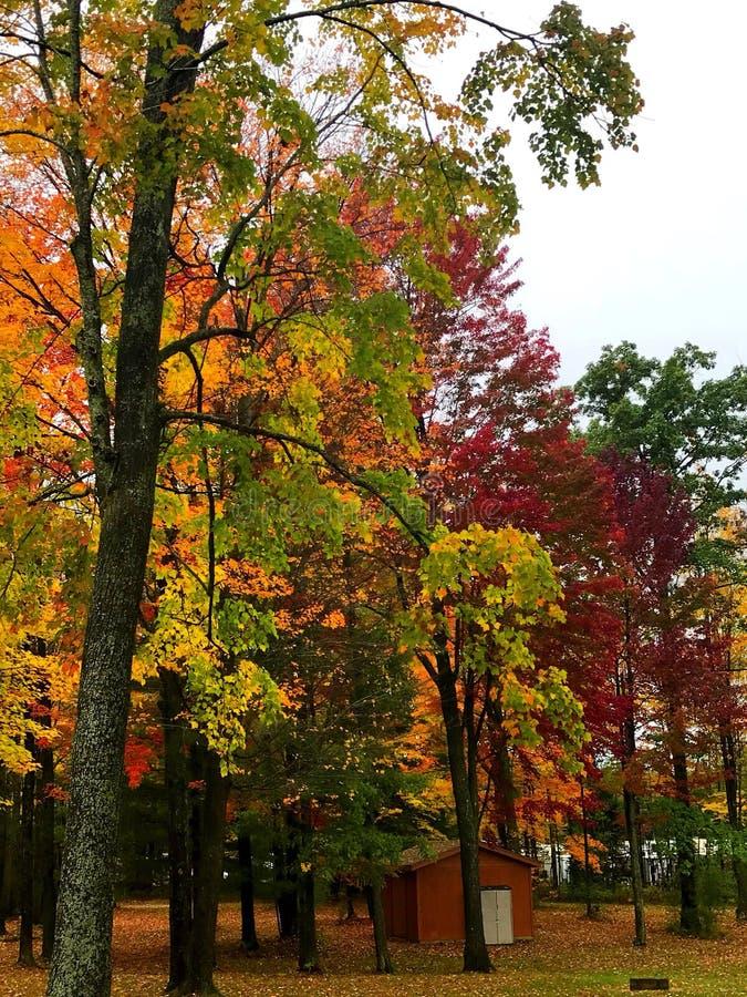 Fall. Days upnorth royalty free stock photos