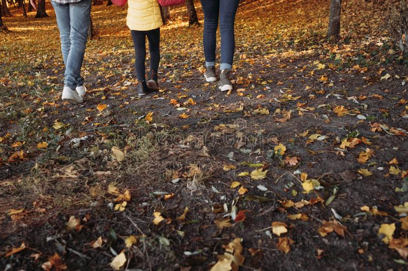 Fall leisure parents child walking nature park stock photography
