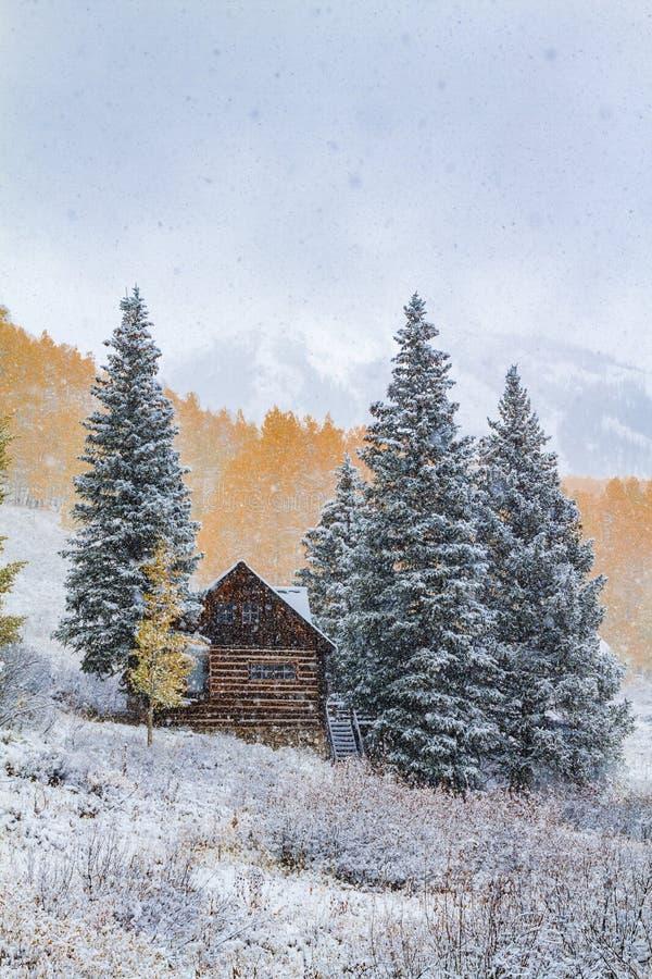 Fall-Farbe und Schnee in Colorado lizenzfreie stockfotos