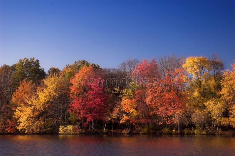 Fall-Farben lizenzfreies stockbild