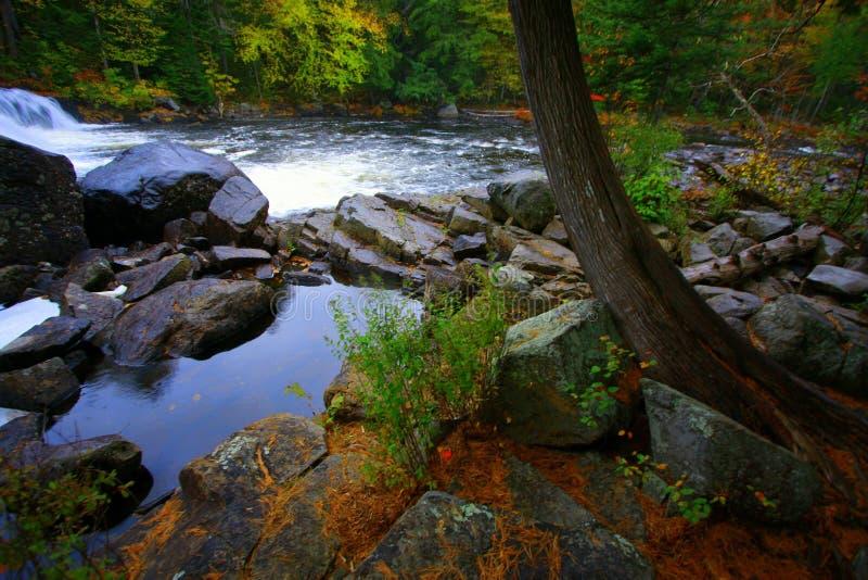 Fall-Farben, Buttermilch-Fälle, NY lizenzfreie stockfotos
