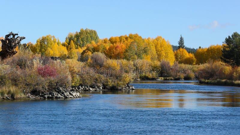 Fall-Farben der Schlaufe, Oregon stockbild