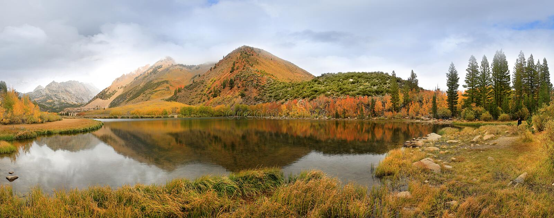 Fall-Farben in der Sierra Berge Kalifornien lizenzfreies stockbild