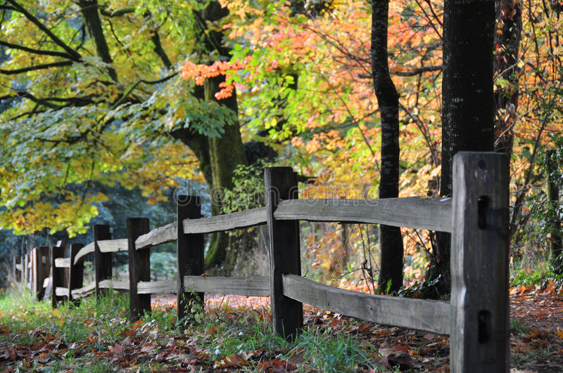 Fall fence royalty free stock photo