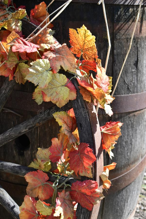 Fall flowers wrapped on a wagon wheel on a Fall day in Groton, Massachusetts, Middlesex County, United States. New England Fall. Colorful floral wrapped wagon stock photography