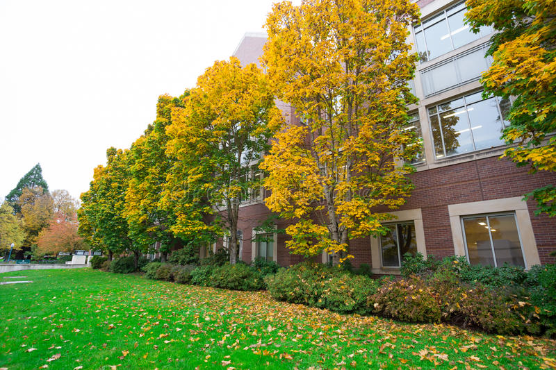 Fall Foilage at University of Oregon. University of Oregon with Fall foilage as the leaves on the trees change color in Eugene Oregon royalty free stock photography