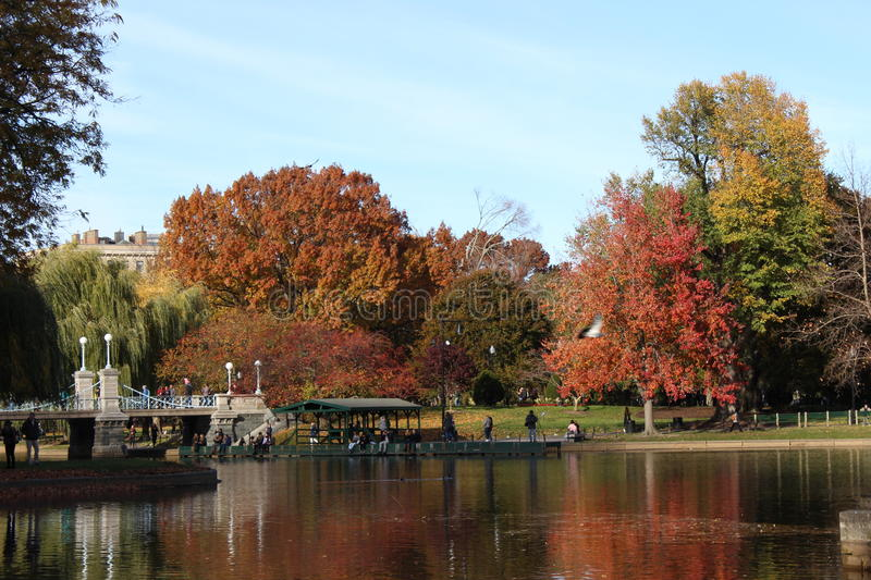 Fall Foliage Colorful Autumn Leaves and Trees in Boston Public Garden. Image of colorful bright red, yellow yellow and brown fall foliage leaves on trees by pond royalty free stock image