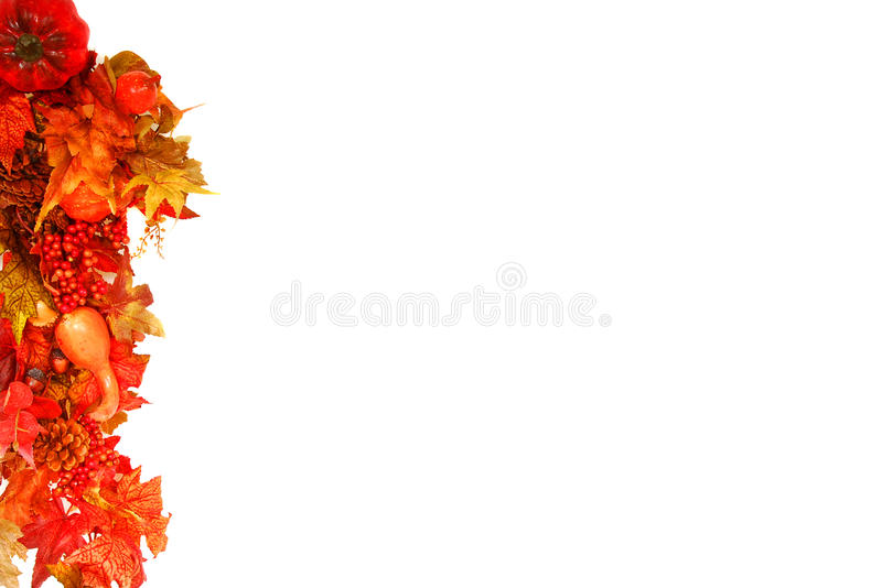 Download Fall foliage background stock photo. Image of colorful - 10545350