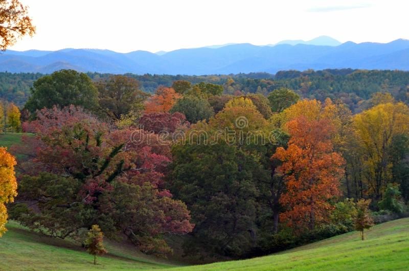Fall foliage at Biltmore Estate Gardens, Asheville NC. Biltmore Estate is a large private estate and tourist attraction in Asheville, North Carolina. Built by royalty free stock photo