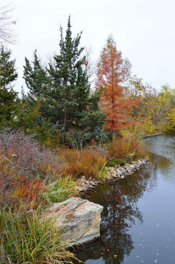 Download Fall Foliage Boise Idaho Albertson Park Stock Image - Image of hawks, boise: 103639445