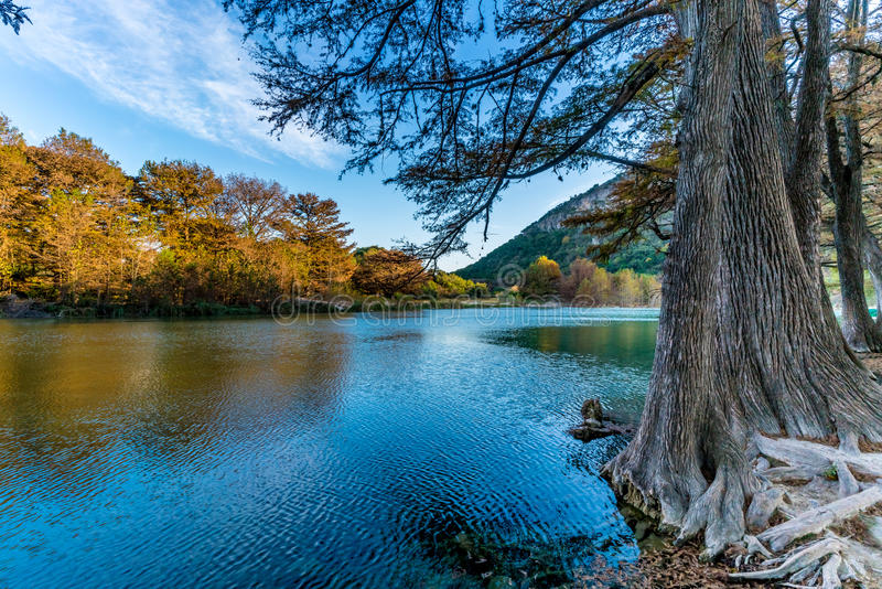 Fall foliage on the crystal clear Frio River in Texas. Fall Foliage on Trees Lining the Crystal Clear Frio River at Garner State Park, Texas stock images