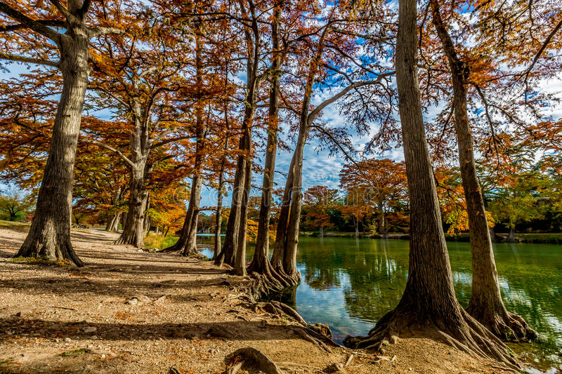 Fall Foliage at Garner State Park, Texas. Beautiful Bright Red, Orange, and Yellow Fall Foliage Surrounding the Clear Frio River, Texas royalty free stock image