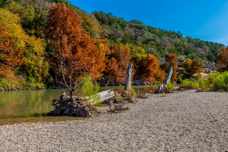 Fall Foliage at Guadalupe State Park, Texas. Fall Foliage on Cypress Trees on the Guadalupe River at the Guadalupe State Park, Texas stock image