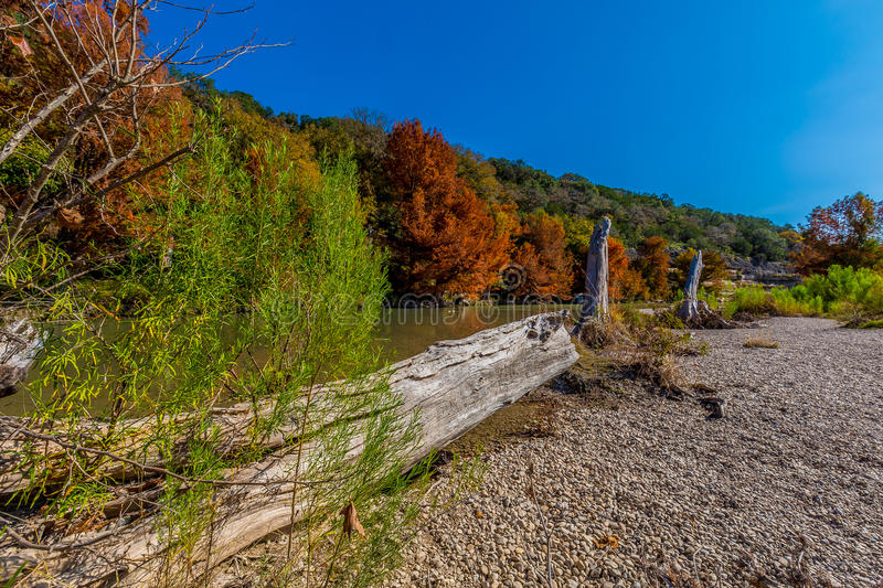 Fall Foliage at Guadalupe State Park, Texas. Fall Foliage on Large Cypress Trees on the Rocky Shores of the Guadalupe River at Guadalupe State Park, Texas stock photos
