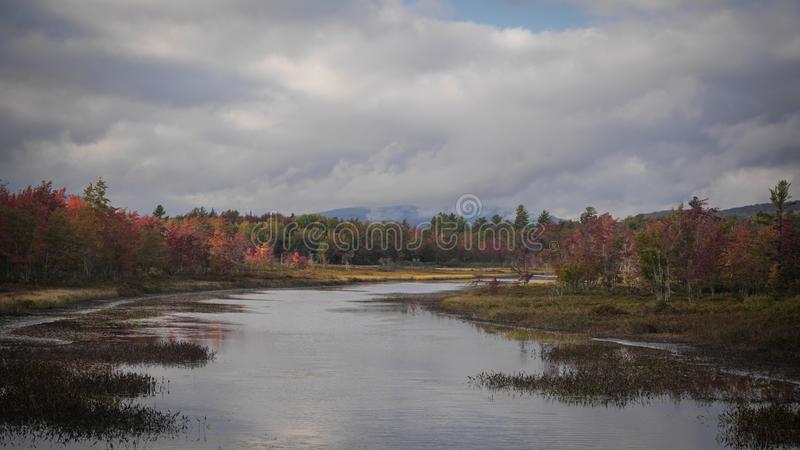 Fall Foliage Inlet royalty free stock image