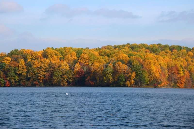 Fall foliage at reservoir stock photography