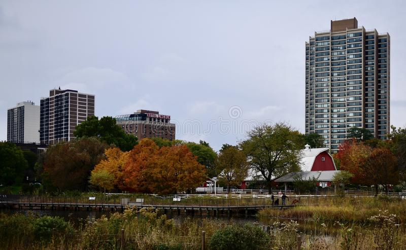Fall Foliage and the Urban Farm. This is a Fall picture of Fall foliage along the South Pond and the Urban Farm at the Lincoln Park Zoo located in Chicago royalty free stock photo