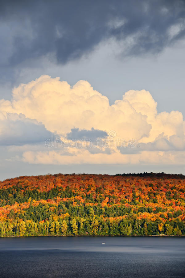 Download Fall forest and lake stock photo. Image of clean, clouds - 21902362
