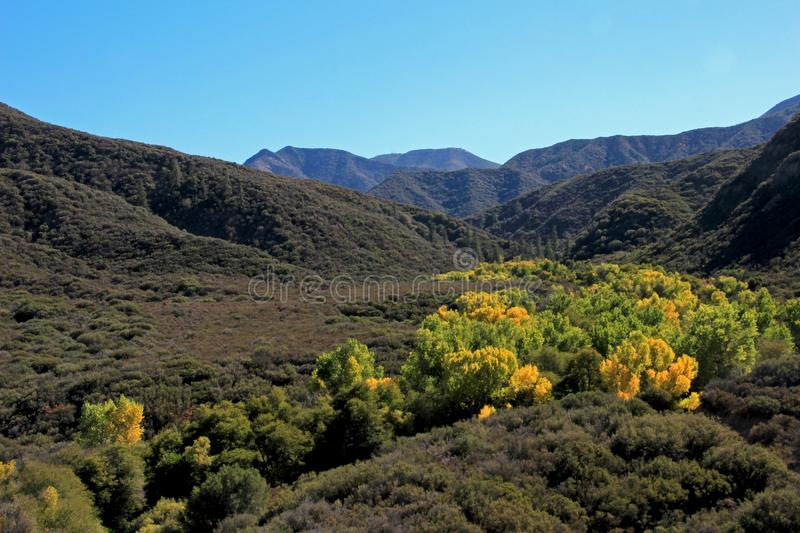Fall forest in orange, yellow and green against blue sky, Los Padres National Forest, USA royalty free stock photos