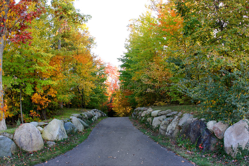 Fall forest path royalty free stock photos