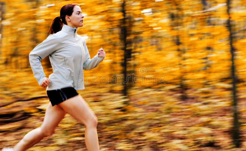 Download Fall Forest Runner stock photo. Image of person, babe - 6906736
