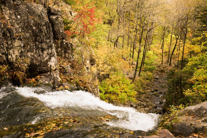 Fall forest waterfall stream Elomovsky in russian Primorye royalty free stock photography