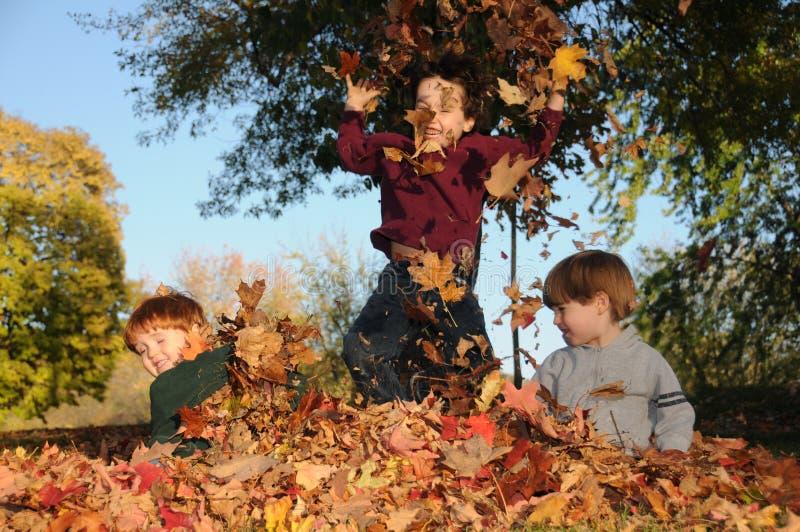 Fall fun stock image