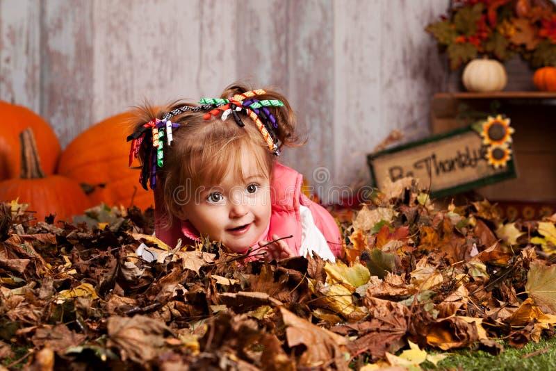 Fall fun. royalty free stock image
