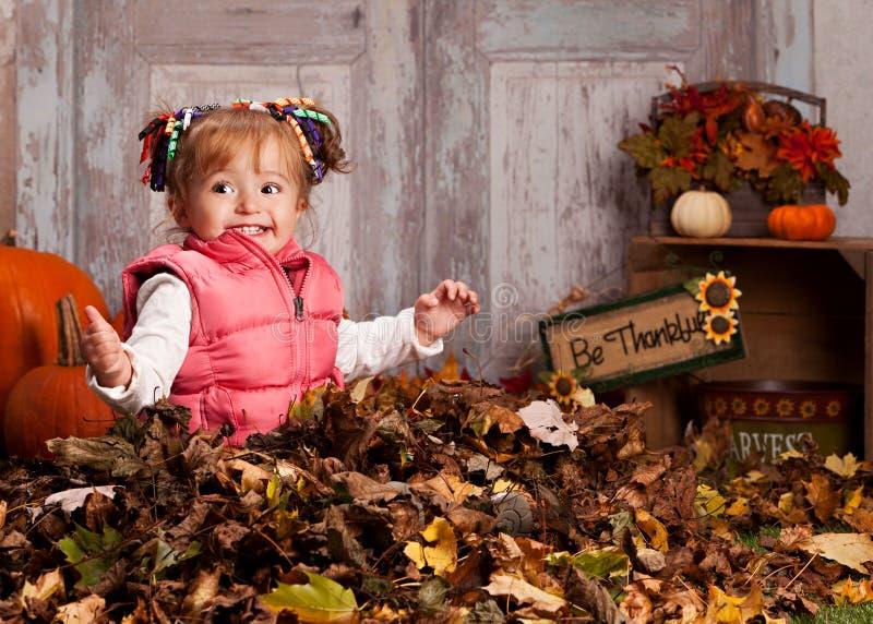 Fall fun. stock photos