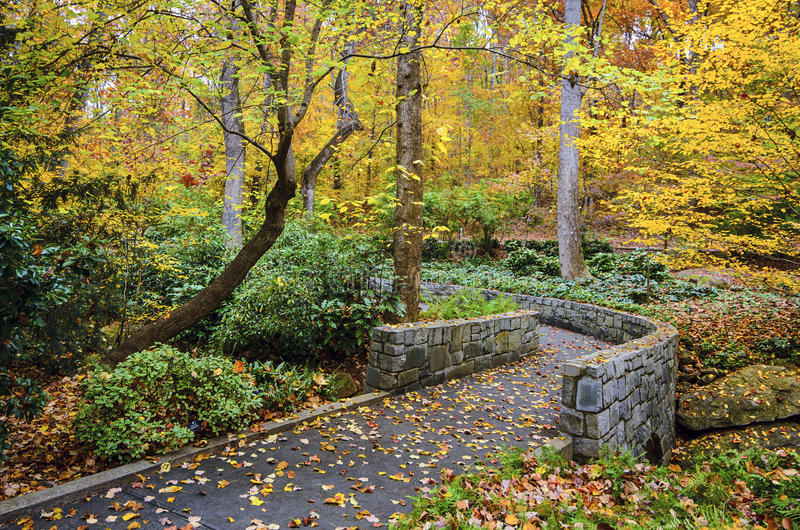 fall gardens stock image image of forest outdoors autumn 44160295