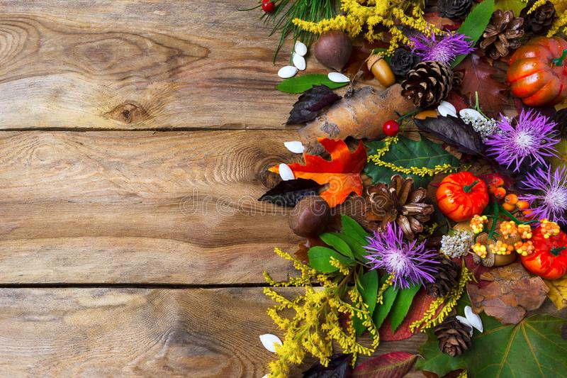 Fall greeting with purple autumn flowers on wooden table stock image