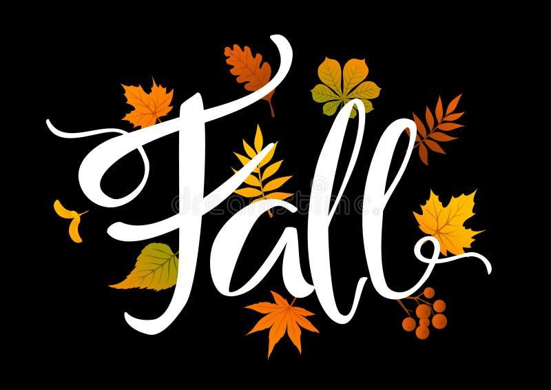 Fall handwritten leaves foliage background on black. Backdrop stock illustration