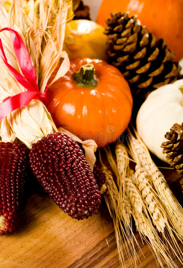 Download Fall Harvest stock image. Image of ribbon, grain, strawberry - 11131609