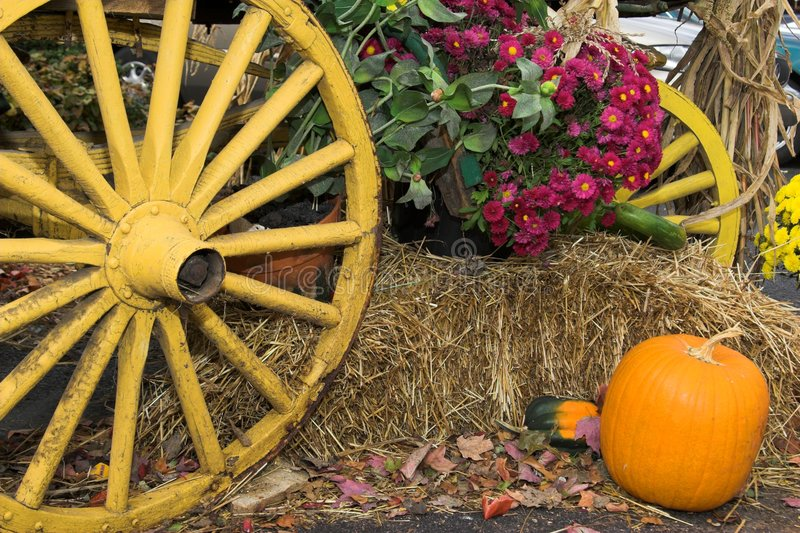 Download Fall Harvest stock image. Image of rural, scarecrows, farmyard - 1413681