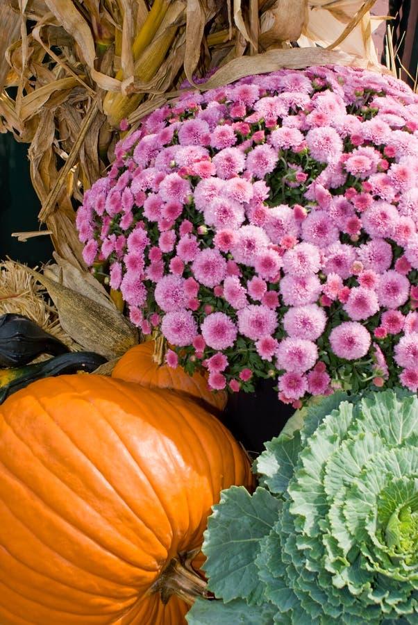 Download Fall Harvest stock image. Image of holiday, pumpkin, orange - 6693113