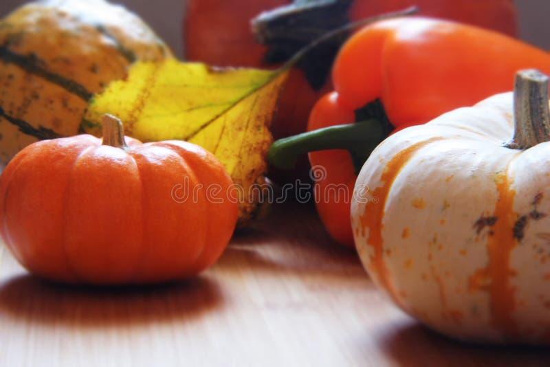 Fall harvest abstract stock photos
