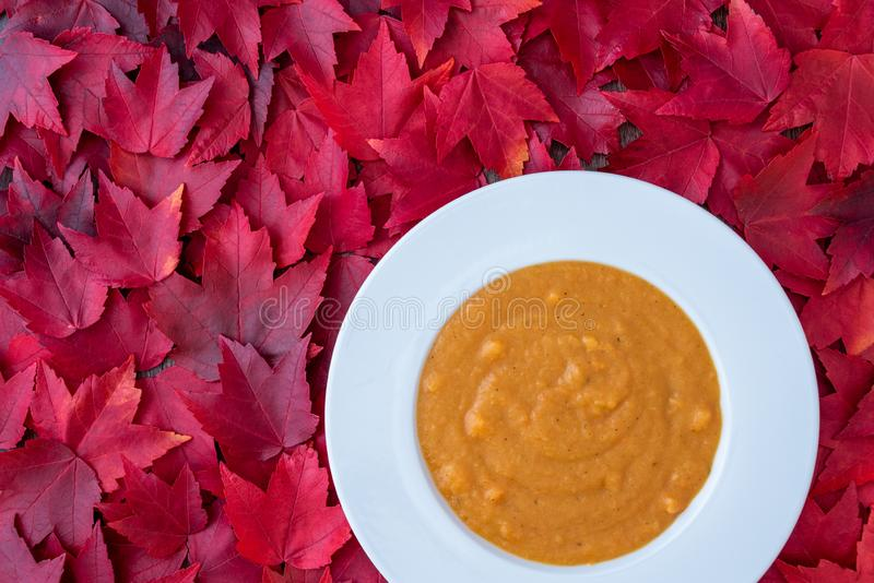 Fall harvest bisque soup of pureed squash and other fall vegetables, in a white bowl, on a background of red maple leaves stock images